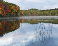 Fall Morning Lake Reflections Royalty Free Stock Photo