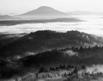 Fall morning mist. The sandstone cliff above treetops of forest Stock Photo