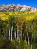 Fall mountain. Kebler Pass, Colorado Stock Photos