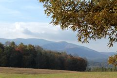 Fall Mountain Backdrop Stock Images