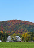 Fall Mountain Colours with Barn in Foreground Stock Photos