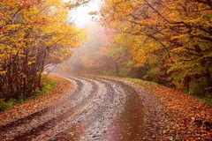 Fall Mountain Highway Stock Photography