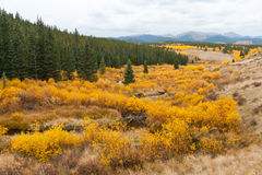 Fall Mountain Landscape in Colorado Royalty Free Stock Image