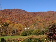 Fall mountain madness. A riot of color in the NC Stock Image