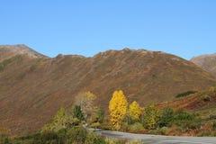 Fall Mountain Scene Stock Image