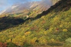Fall mountain scenic. Autumn landscape in the mountain, nagano japan Royalty Free Stock Photos