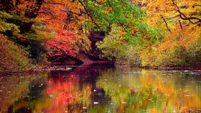 Fall Mountain Stillness Stock Images