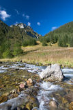 Fall Mountain Stream. Autumn Landscape with stream in Tatra Mountains royalty free stock photos
