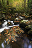 Fall Mountain Stream. A beautiful fall mountain stream in Smoky Mountain National Park Stock Images