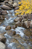 Fall Mountain Stream Stock Photography