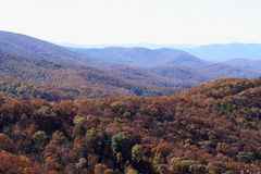 Fall Mountain top Stock Images