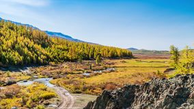 Fall in Mountains. Landscape panorama. Altai. Siberia stock video