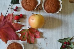 Fall muffins on white rustic background. Autumn vibes through fall backgrounds stock image