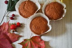 Fall muffins on white rustic background. Autumn vibes through fall backgrounds royalty free stock image