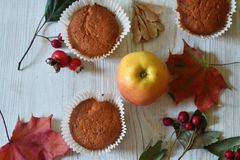 Fall muffins on white rustic background. Autumn vibes through fall backgrounds stock photos
