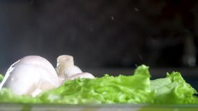 Fall mushrooms on a green salad. A large amount of water is scattered in different directions. Slow motion close-up. Fall mushrooms on a green salad. A large stock video