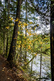 Fall at Nairn Falls, Canada Royalty Free Stock Images