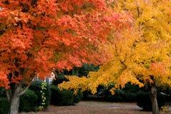 Fall in Nashville Royalty Free Stock Photos