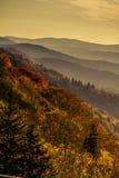Fall in Nationalpark Great Smoky Mountains Lizenzfreies Stockbild