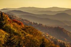 Fall in Nationalpark Great Smoky Mountains Lizenzfreie Stockfotos