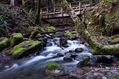 Fall-Nebenfluss und Brücke lizenzfreie stockfotografie