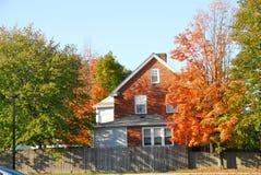 Fall in Needham Lizenzfreies Stockfoto