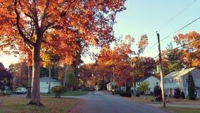Fall Neighborhood royalty free stock image