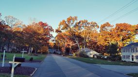 Fall Neighborhood Royalty Free Stock Images