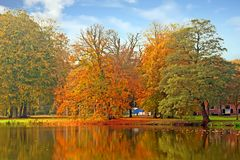 Fall in the Netherlands Royalty Free Stock Photography