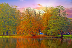 Fall in the Netherlands Royalty Free Stock Photos