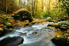 Fall in New England. A slow moving stream in a forest decked out in fall colors Stock Photos