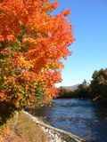 Fall in New England. River and tree, Fall in New England stock photos