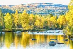 fall norway arkivfoton