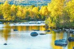 fall norway arkivbild