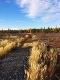 Fall NWT hike. Wilderness autumn hike Stock Images