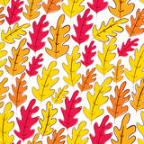 Fall oak leaves seamless pattern, vector background. Royalty Free Stock Images