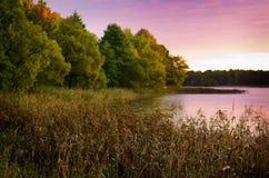 Fall och lake Fotografering för Bildbyråer