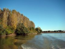 Fall in October on the arms & x28;channels& x29; of the Danube River 1. Autumn in October on the Danube River`s arms channels. Here Borcea arm to km.98. Autumn stock photo
