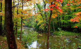 Fall In Ohio Royalty Free Stock Photo