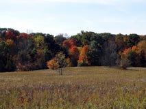 Fall in Ohio Stock Image