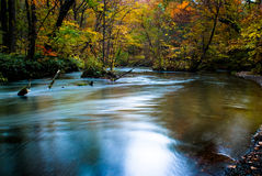 Fall of Oirase, Japan. This is very famous river for the person like to take the river photo especilly in the fall season with red maple and leaf Stock Images