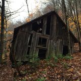Fall. Old building in the woods Royalty Free Stock Photos