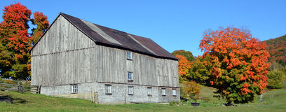 Fall old farm in country side. BROMONT QUEBEC CANADA 10 11 2016:Fall old farm in country side of Bromont it is in the Brome-Missisquoi Regional County Stock Image