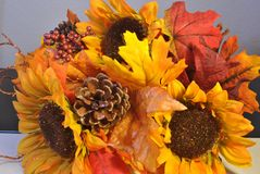 Fall ornament Stock Photos