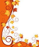 Fall  ornate design Stock Image