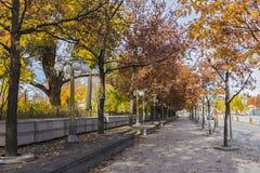 Fall in Ottawa Royalty Free Stock Image