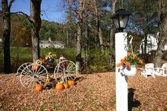 Fall outdoor scene Stock Photos