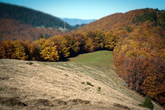 Fall over the hills Stock Photography
