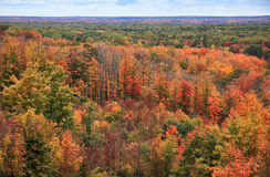 Fall Overlook Royalty Free Stock Image