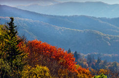 Fall overlook in The Great Smoky Mountains. Royalty Free Stock Photos